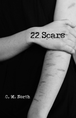 22 Scars Digital Cover